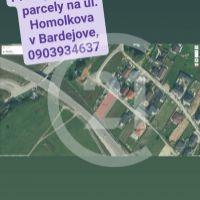 Trvalý trávnatý porast, Bardejov, 527 m²