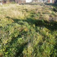 Záhrada, Lipníky, 670 m²