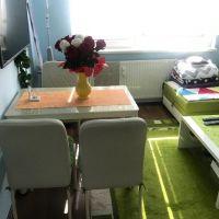 1 izbový byt, Nové Zámky, 36 m², Pôvodný stav