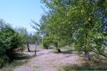 chata - Mašková - Fotografia 27