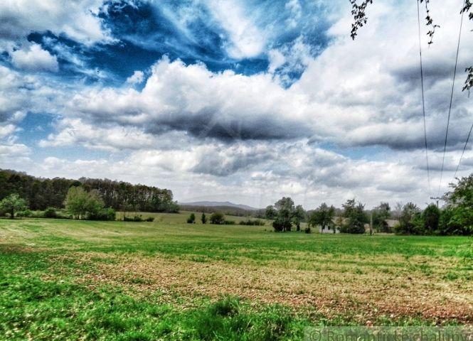 poľnohospodárska pôda - Dolná Strehová - Fotografia 1