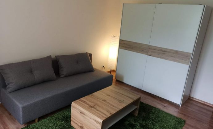 Prenájom 1-izbového bytu - Martin - centrum