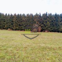 Komerčná zóna, Detva, 2594 m²