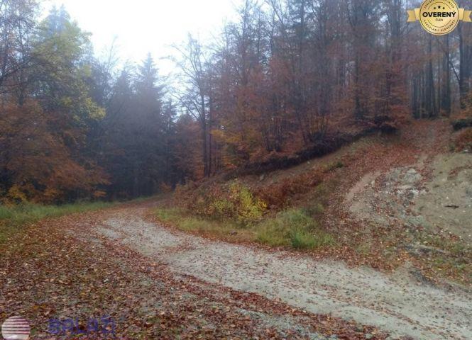 poľnohospodárska pôda - Brieštie - Fotografia 1