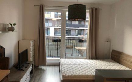prenájom 1 izbový byt/Garsónka, Žltá, Petržalka - BA EXPISREAL