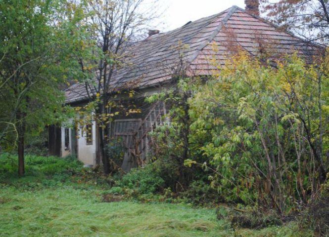 Rodinný dom - Veľké Ludince - Fotografia 1