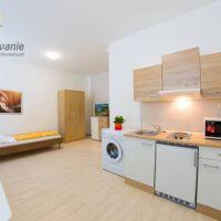 1 izbový byt, Nitra, 30 m², Pôvodný stav