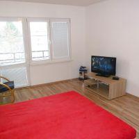 1 izbový byt, Halič, 44 m², Kompletná rekonštrukcia