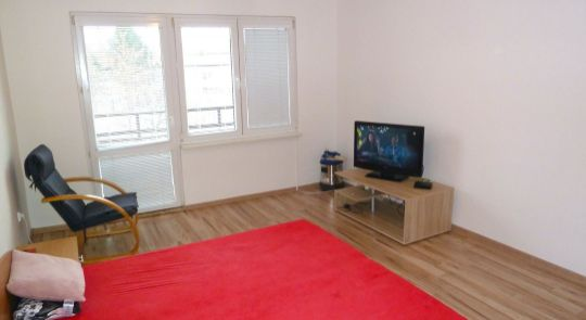 Na predaj 1 izbový byt 44 m2, Halič - po rekonštrukcii