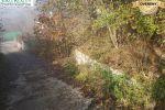 záhrada - Stupava - Fotografia 4