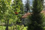 Rodinný dom - Mikóháza - Fotografia 3