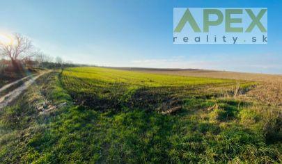Exkluzívne APEX reality_investičný pozemok v okrajovej časti Dvorníkov, 13228 m2