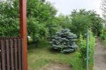 záhrada - Dunajská Streda - Fotografia 2