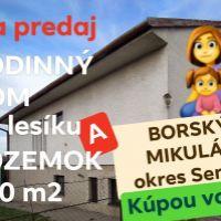 Rodinný dom, Borský Mikuláš, 380 m², Čiastočná rekonštrukcia