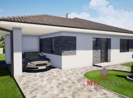 Novostavba Rodinný dom Hrádok / VYPLATENA ZALOHA