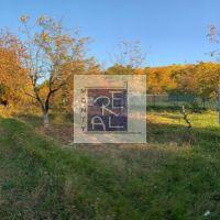 Záhrada, Nitra, 471 m², Pôvodný stav