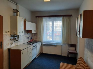 velký slnečný 1 izbový byt v obci Lednické Rovné