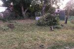 záhrada - Humenné - Fotografia 4