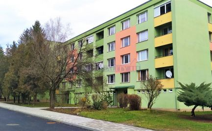 3 izb. byt centrum ID 2089