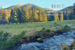 Rekreačný  pozemok  na Liptove,  Nízke Tatry