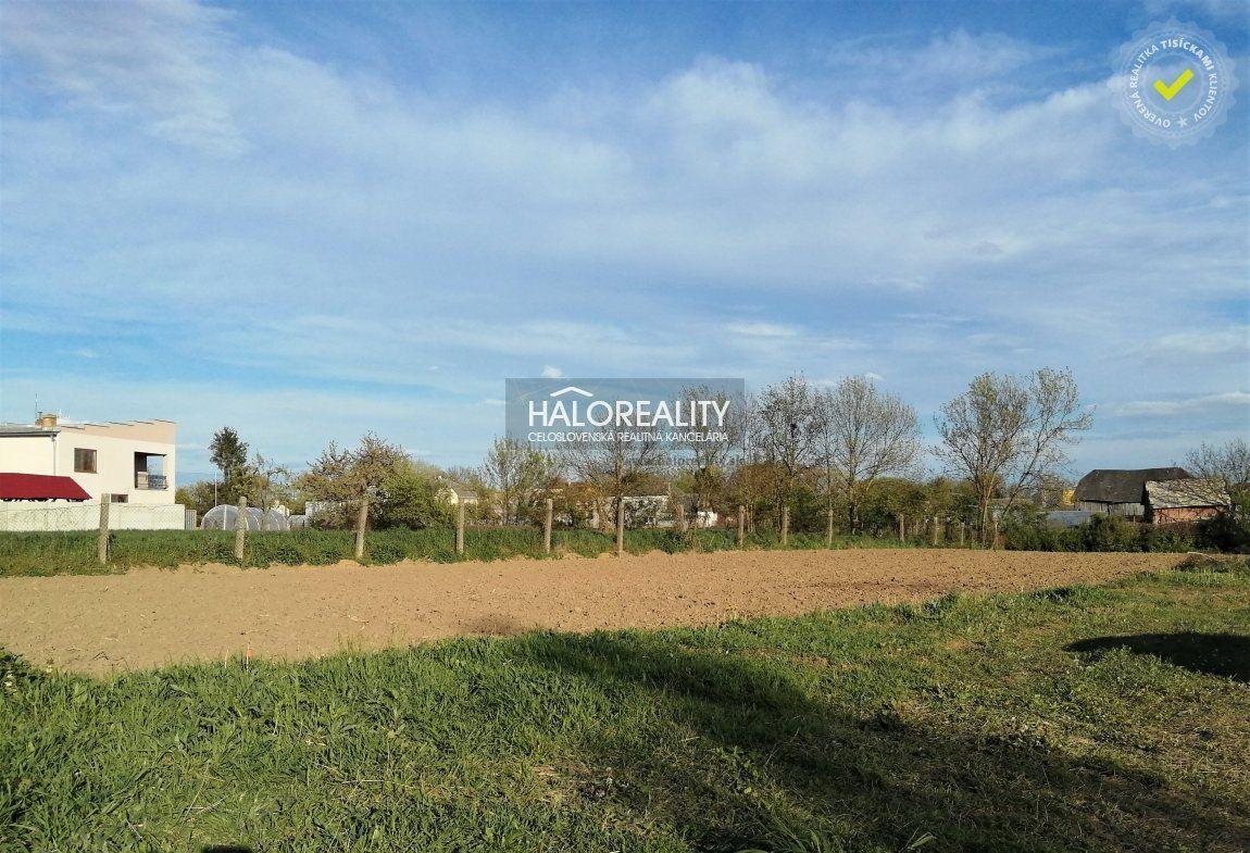 Pozemok pre RD-Predaj-Zemplínske Hradište-18 790 €