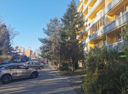 PRENAJATÉ Veľký 2.izbový byt na prenájom /balkón/ Piešťany