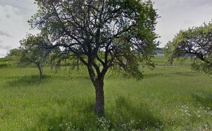 ZĽAVA!!!  - Veľký pozemok o rozlohe 21 000 m2 , s chatkou  pri B. Bystrici – cena 38 000€