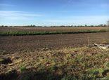BA-Čunovo: investičný pozemok 10 750 m2