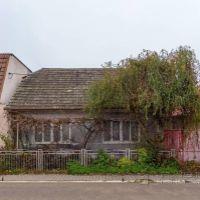 Rodinný dom, Dechtice, 72 m², Pôvodný stav