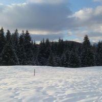 Rekreačný pozemok, Brezno