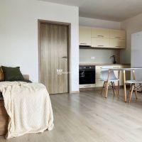 1 izbový byt, Trenčín, 32 m², Kompletná rekonštrukcia
