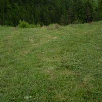 Orná pôda, Veľký Krtíš, 53500 m²