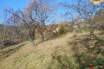 záhrada - Štiavnické Bane - Fotografia 4
