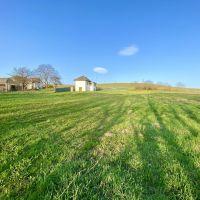 Poľnohospodárska pôda, Šarišská Trstená, 1647 m²