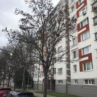 2 izbový byt, Bratislava-Ružinov, 52 m², Kompletná rekonštrukcia