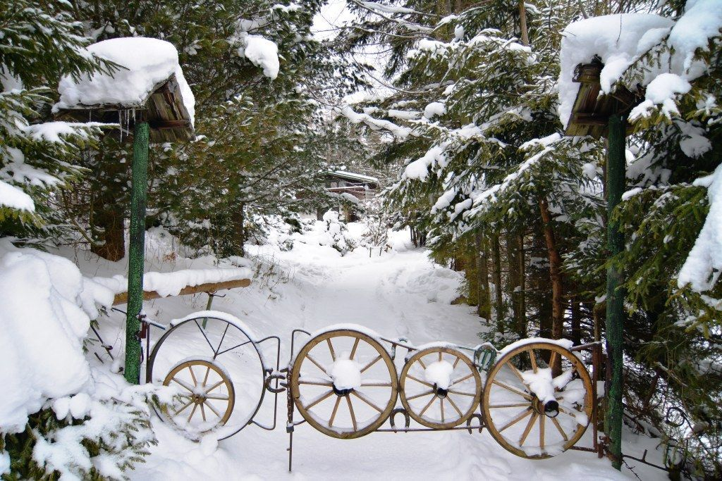 PREDANÉ chata Bachledová dolina, pozemok  1723 m2 - 2