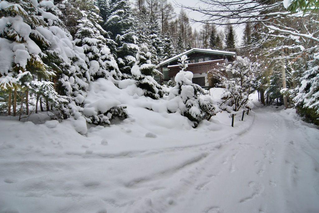 PREDANÉ chata Bachledová dolina, pozemok  1723 m2 - 3
