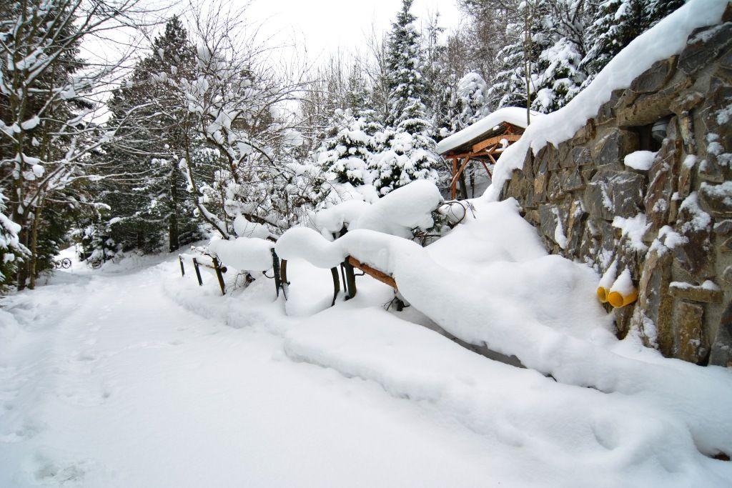 PREDANÉ chata Bachledová dolina, pozemok  1723 m2 - 9