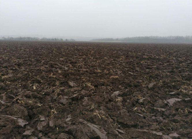 orná pôda - Suché Brezovo - Fotografia 1