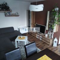2 izbový byt, Nová Ves nad Žitavou, 54 m², Kompletná rekonštrukcia