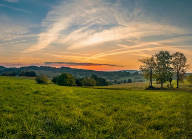 poľnohospodárska pôda - Považská Bystrica - Fotografia 1
