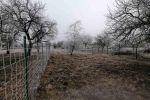 rekreačný pozemok - Štúrovo - Fotografia 4