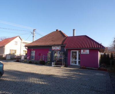 Na predaj polyfunčný objekt aj s 2 izbovým bytom obec Čereňany okres Prievidza FM1011