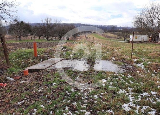 poľnohospodárska pôda - Malý Šariš - Fotografia 1