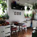 Predaj 2 izb.bytu po rekonštrukcii, Šoltésovej ulica