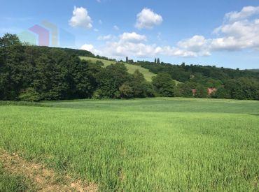 Krásny pozemok pre chalupy, 5870 m2, Nová Bošáca