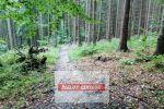 chata, drevenica, zrub - Ružomberok - Fotografia 100