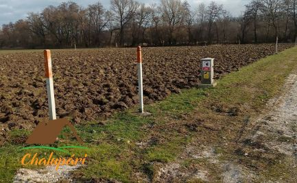 TO predaj pozemku - orná pôda  CH004-14-PEG