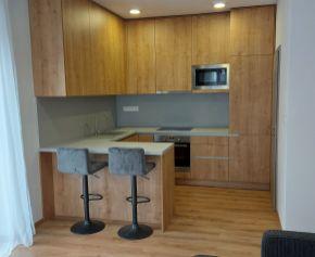 Komfortný 1 izbový byt s terasou a s vlastným parkovacím miestom na prenájom v Galante