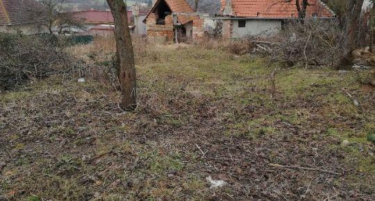 Predám stavebný pozemok so starším domom vo Vidinej